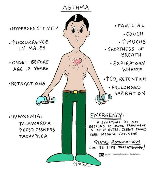 Asthma Mnemonic | Medical-Surgical class | Pinterest ...
