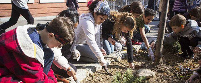 Greenmarket School Tours | GrowNYC - - Early Fall trip?