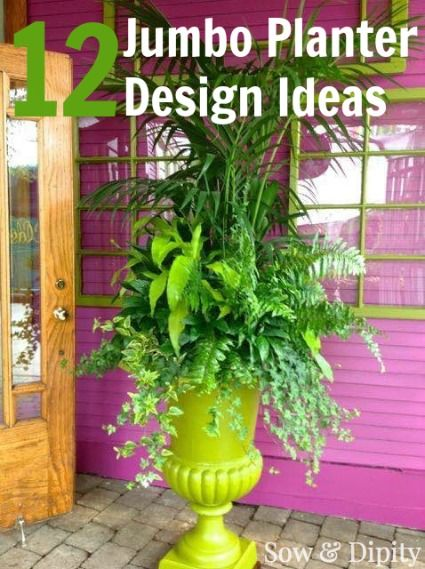 Large planter designs for impact at doorways and entrances