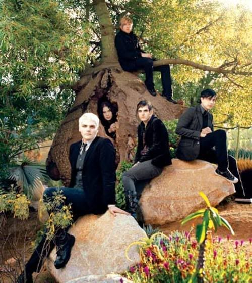 I love MCR, but seeing them wearing black and sitting on (and in?) a tree is a little odd.
