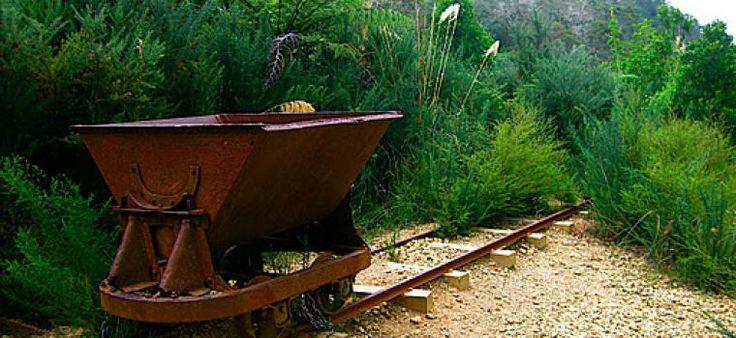 Karangahake Gorge Historic Track