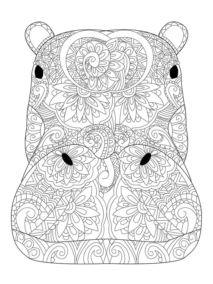 1000 Images About Animal Coloring Pages For Adults On