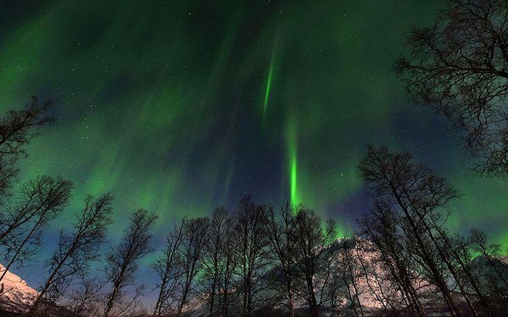 Kuzey Işıkları İskandinavya