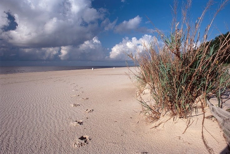 Mississippi...Biloxi Beach!  If you live in Mississippi you must go to the beach!  One of the kids' favorite get-a-ways!!