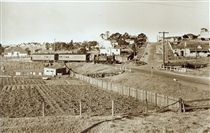 Morpeth Train arriving at East Maitland, NSW Photo taken 1953. v@e.