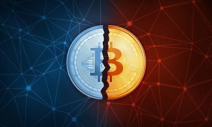 politica bitcoin paypal bitcoin veloce
