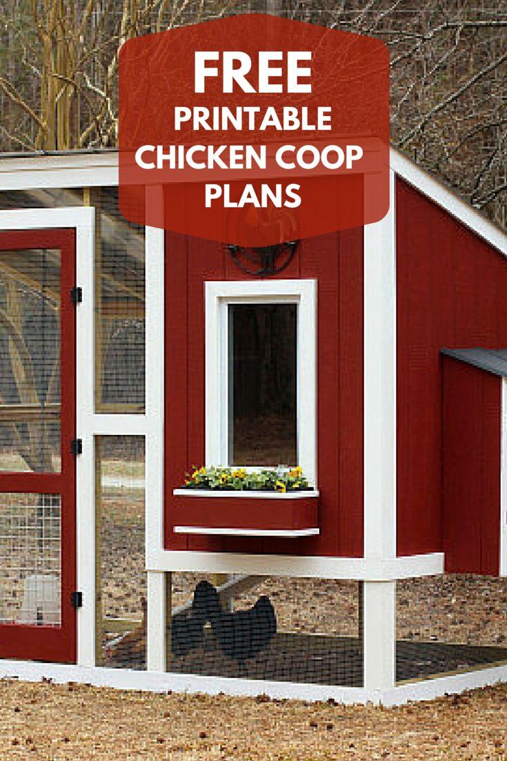 Superb 17 Best Ideas About Chicken Coop Plans On Pinterest Chicken Inspirational Interior Design Netriciaus