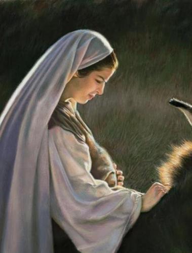 Mary traveling to Bethlehem - liz lemon swindle