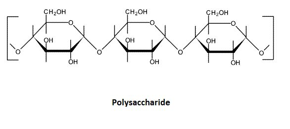 17 Best images about Macromolecules on Pinterest | Polymers, Dna and The two