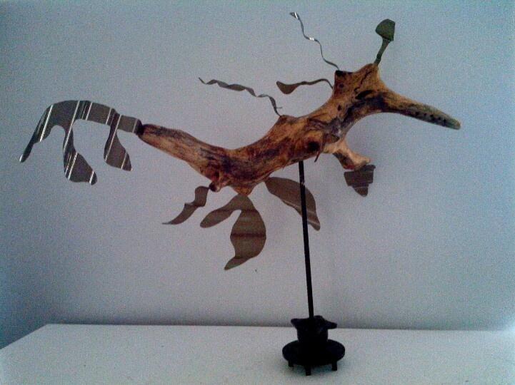 Leafy sea - dragon