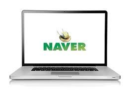How to do a successful #SEO plan in #Naver. you can see the latest online trends and naver seo tips .   http://seoseminkorea.blogspot.kr/2014/05/naver-seo-how-to-do-successful-seo.html