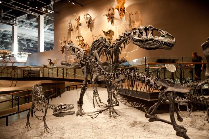 Natural History Museum of Utah in Salt Lake City - Photograph by Matt Morgan