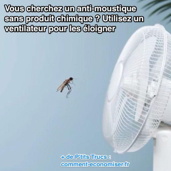 17 meilleures images propos de insectes et parasites sur pinterest plante - Ventilateur rowenta anti moustique ...