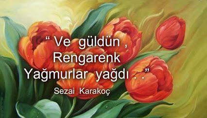 Ve güldün rengarenk yağmurlar yağdı...  Sezai Karakoç