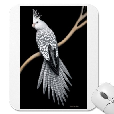 Google Image Result for http://rlv.zcache.ca/whitefaced_pearl_cockatiel_mousepad-p144032867158727629envq7_400.jpg