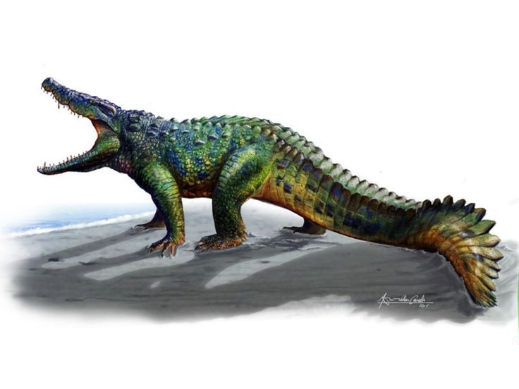 Su nombre es Allodaposuchus hulki y convivió con los últimos dinosaurios del Pirineo.