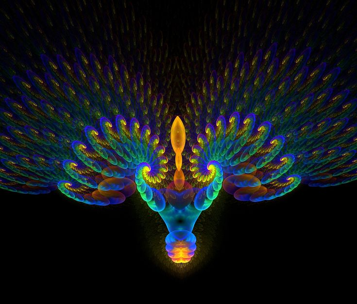 peacock pictures | Beautiful peacock by ~eReSaW on deviantART