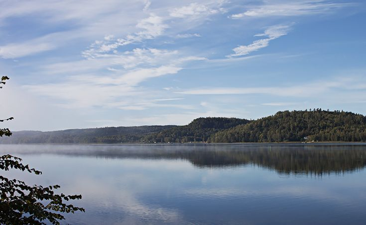 A brutally beautiful foggy morning by lake Åsunden