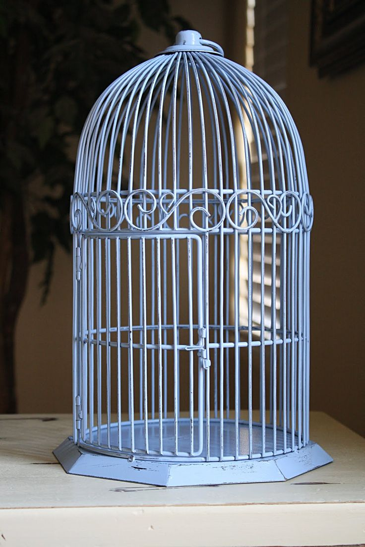 17 best ideas about large bird cages on pinterest birdcages birdcage decor and antique bird cages. Black Bedroom Furniture Sets. Home Design Ideas