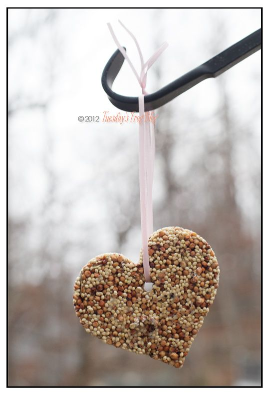 Birdseed biscuits...from Family Fun magazine. 3/4 c birdseed, 1 Tb flour, 2 Tbs water. Smush into cookie cutter, insert straw for hole, bake at 170 for 1 hour on foil-lined oven sheet. Tie ribbon and hang outside!