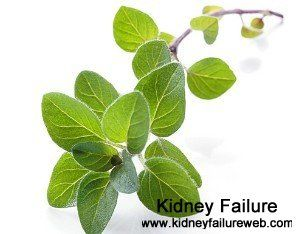 High BUN and Creatinine Level: Causes and Management    http://www.kidneyfailureweb.com/creatinine/396.html