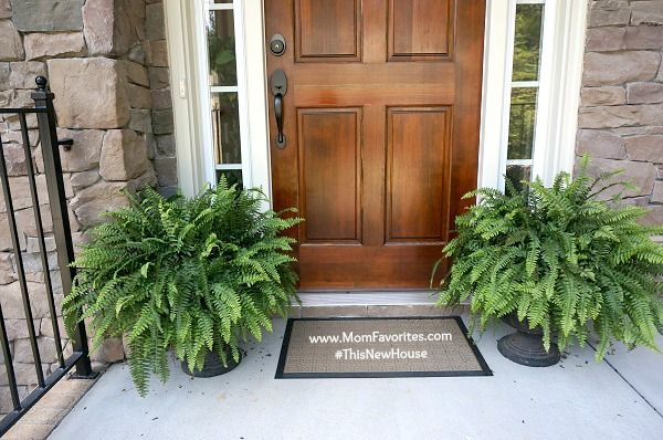 1000 images about yard planters on pinterest front door Plants next to front door
