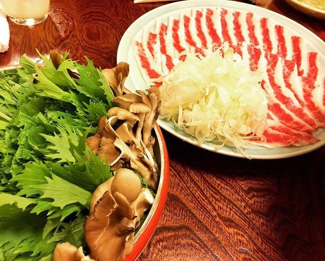 馬肉のハリハリ鍋!あっさりで美味しい♡ ・ #銀座 #東京 #東京グルメ #ginza #tokyo #馬肉 #馬 #お肉 #肉 #meet #はりはり鍋 #鍋 #お鍋 #きのこ #food #foodstagram #like4like #likeforlike #follow4follow #followme #instagood #食べ歩き #外食 #食事記録