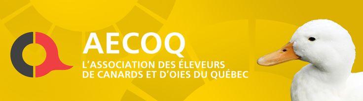Association des éleveurs de canards et d'oies du Québec (AECOQ)