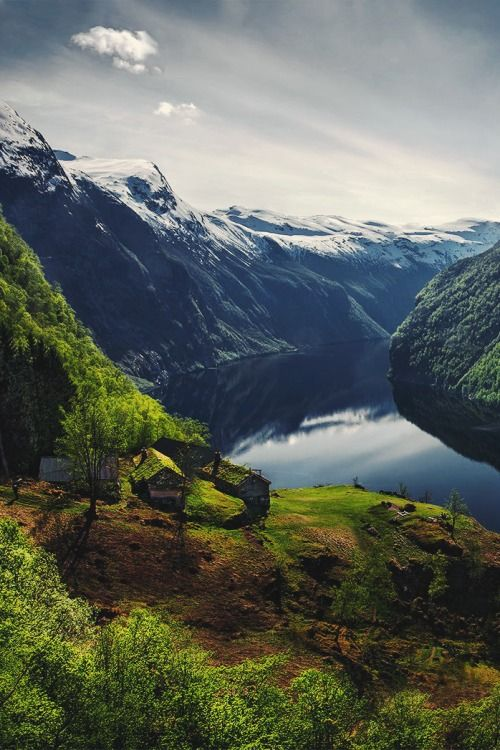 The #Green #Fjord by Max Rive
