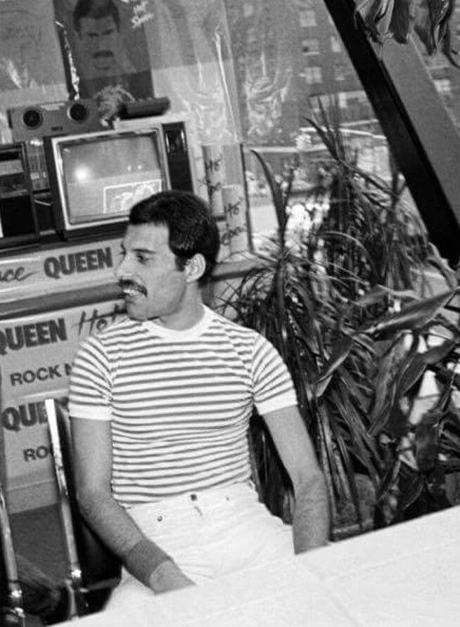 Freddie Queen Freddie Mercury Freddie Mercury Queen Photos