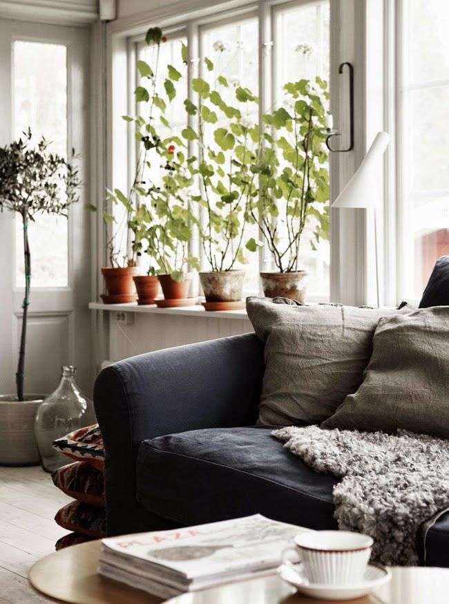 Love the collection of terra cotta and glass along the windowsill. Great color for the couch and fur throw