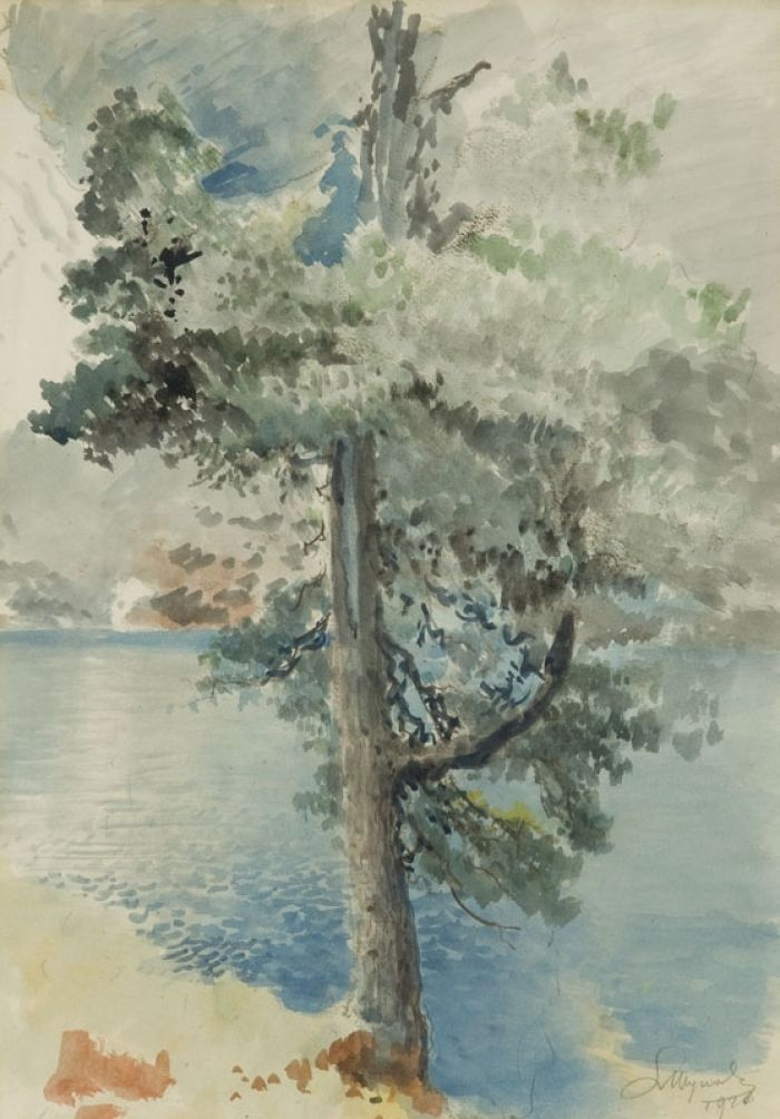 Leon Wyczółkowski - Limba w Tatrach, 1920 r.