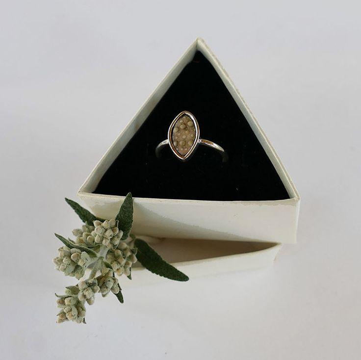 Sea urchin ring #jewellery #packaging #trianlge #sealife #ocean #seaurchin #floral #gift