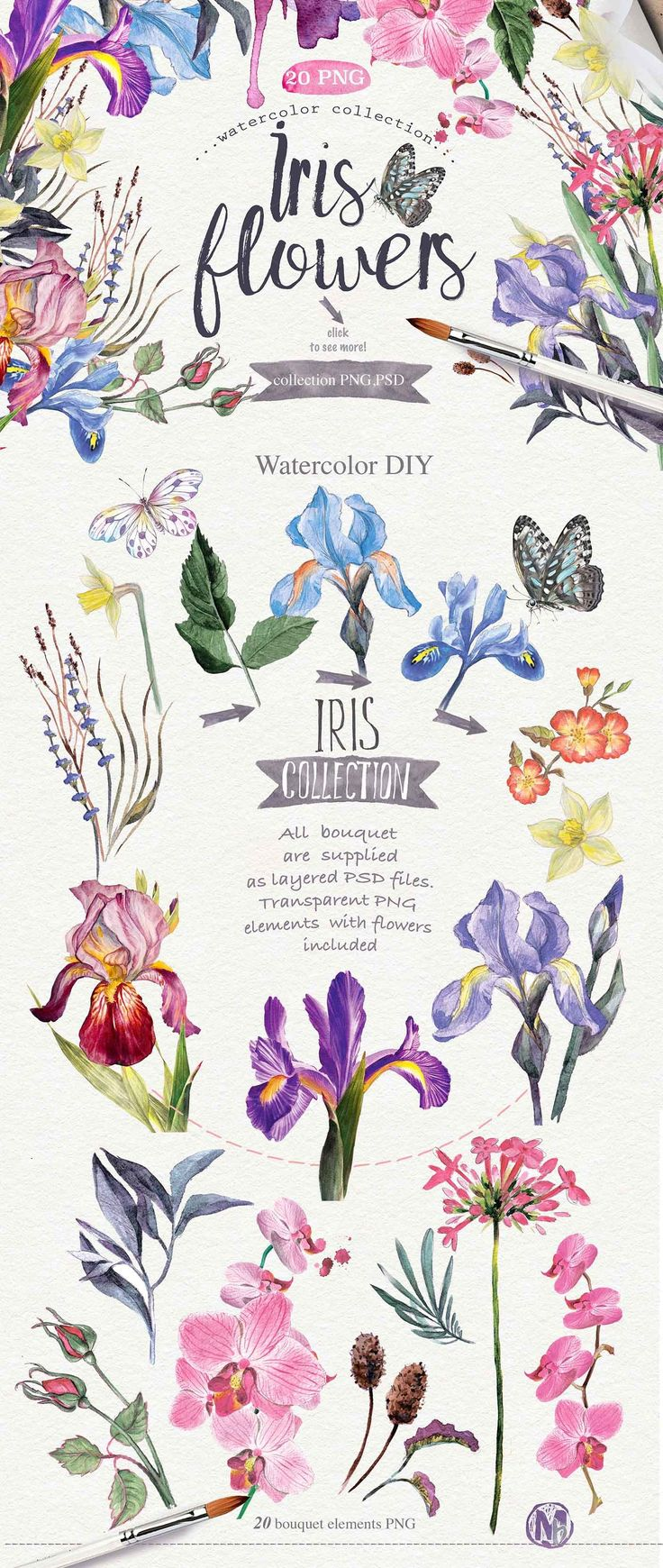 Watercolor flowers png clipart illustrations on creative market - From Creativemarket Com Love This Watercolor Iris Clip Art Adorable Hand Painted Clip Art Elements