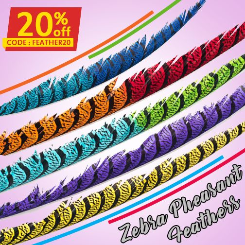 #Dyed over the #natural stripes colour, these #Zebra #PheasantFeathers are stiff and flexible creating an umbrella effect over the #costume. Try these eye-pleasing quills as a part of #carnival dress, also get 20% off on first #bulk purchase using FEATHER20 code. #HurryUpNow! #featherproduct #featherproduction #featherfan #feathersmask #feathershat