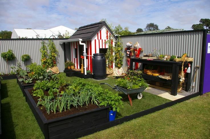 My Silver Award winning garden to inspire new gardeners