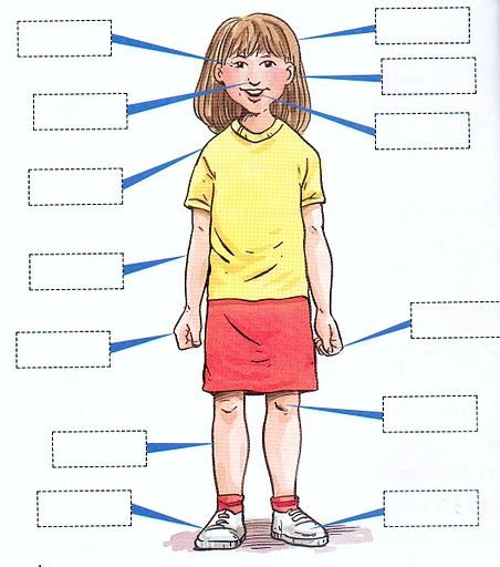 Image detail for -PARTS OF THE BODY MATCHING POSTER - GAME | learningenglish-esl