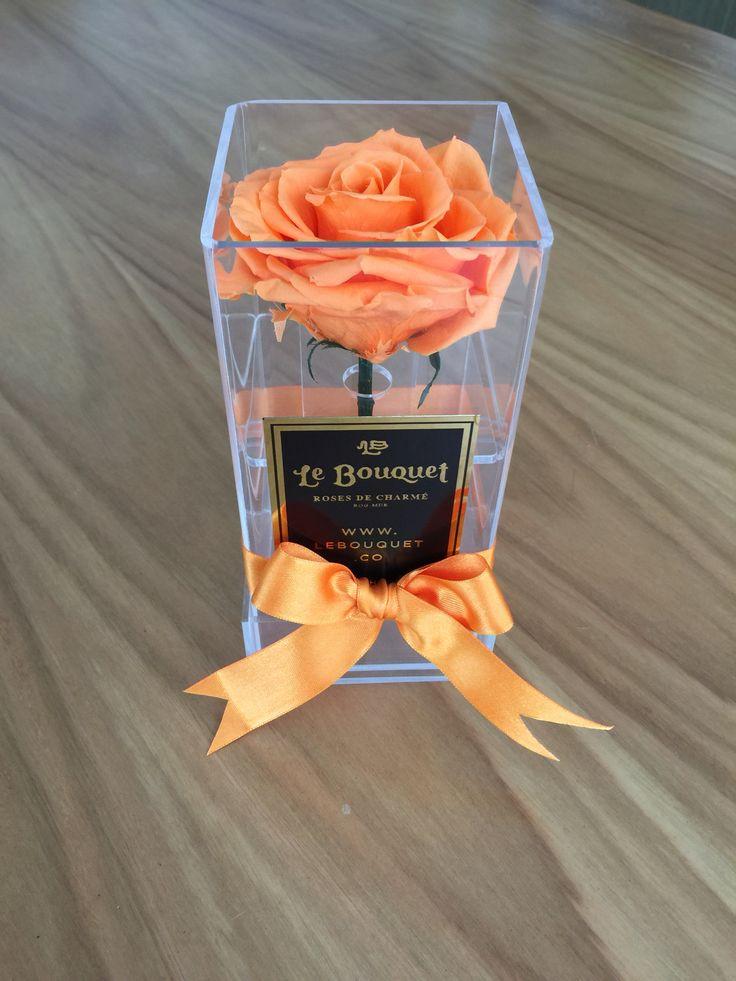 Solitario en acrílico con 1 rosa premium que dura 1 año Le Bouquet