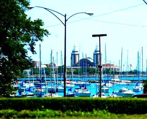 Chicago marina, Navy Pier in background.