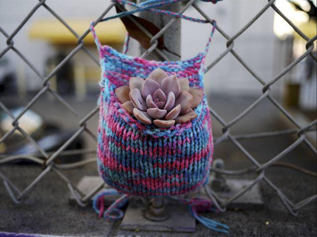Heather Powazek Champ knits adorable little plant pockets and her husband, Derek Powazek, fills them with soil and live plants.