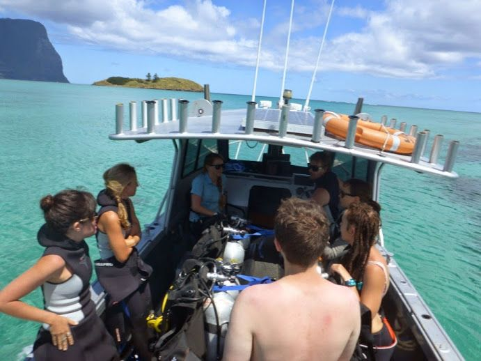 On our way out for a dive  www.lordhoweisland.info