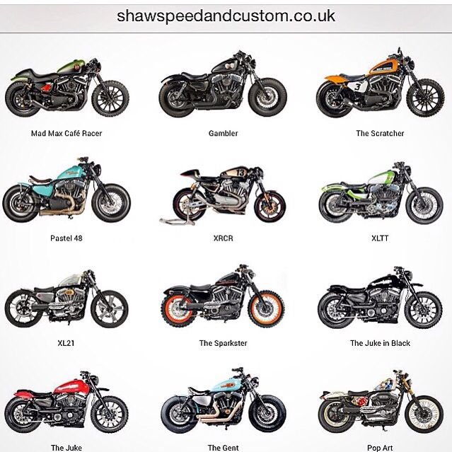Shaw Speed Customs out of the UK builds some amazing Sportster conversions.