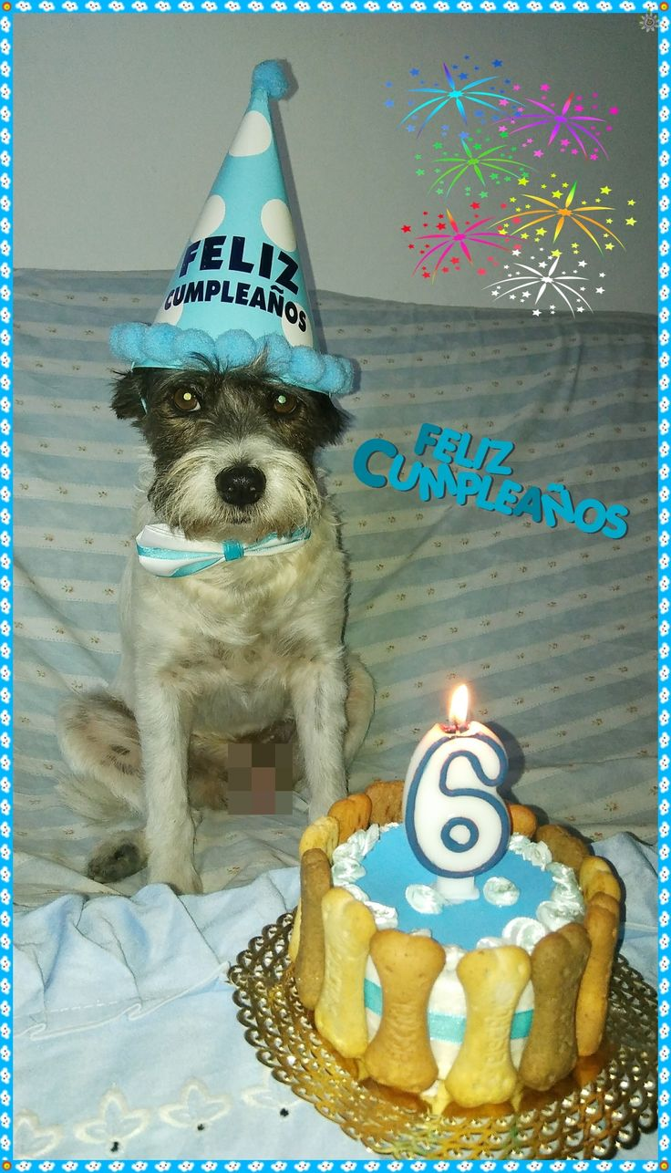 Cumpleaños de GOLFILLO