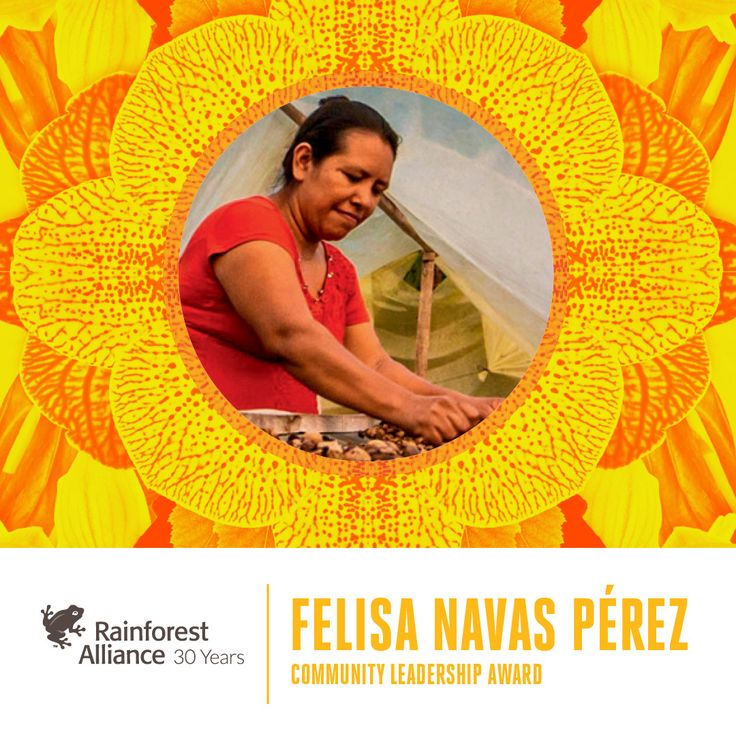 At the Rainforest Alliance gala next week, we will be honoring Felisa Navas Pérez, a leader who has been instrumental in guiding her community in its efforts to build a truly sustainable forest economy in Guatemala's Maya Biosphere Reserve. Congratulations, Felisa!