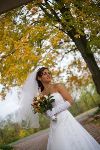 Branson Mo Country Carriage Weddings At Williamsbrooke Barn Descriptions Wedding Carriage Wedding Dresses Strapless Wedding Dress