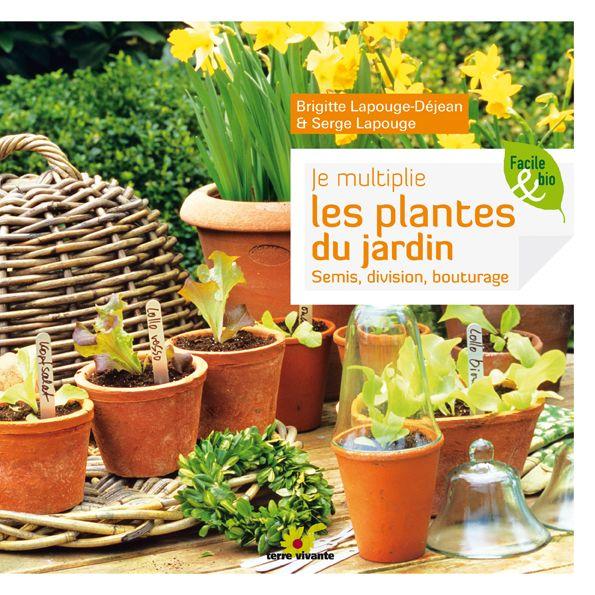 Comment Multiplier Les Plantes Du Jardin Semis Division