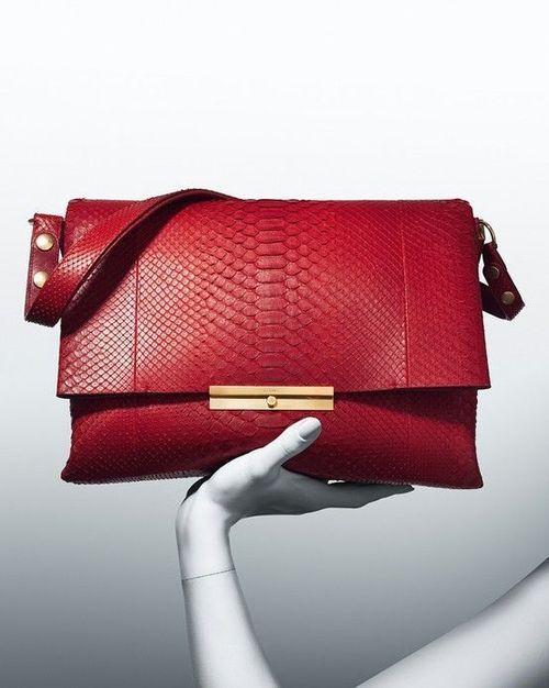 Celine Python Bag | Bags and Handbags | Pinterest | Celine, Bags ...