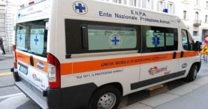 Il Comune di Milano non rinnova i pass e multa gli automezzi per il soccorso agli animali