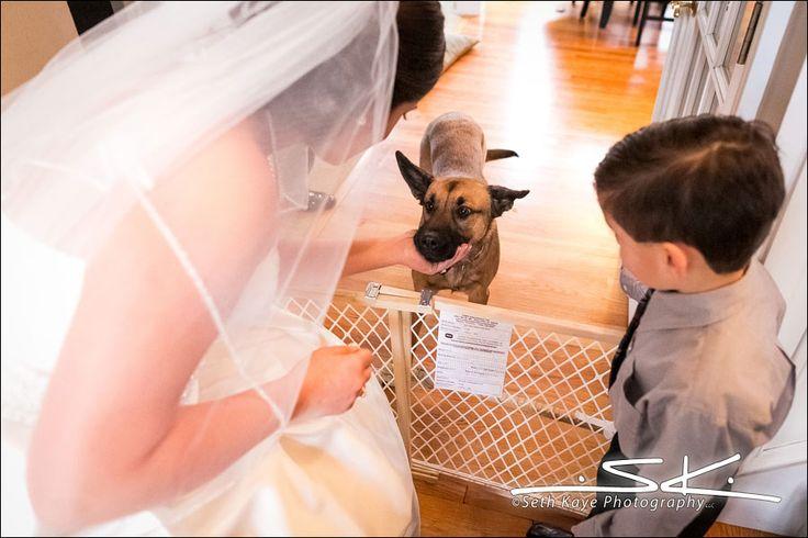 Bride Prep, Pets at Weddings