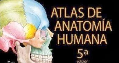 Atlas de Anatomía Humana - Netter - 5 Edición Contenido: 1. Cabeza y cuello 2. Dorso y médula espinal 3. Tórax 4. Abd...